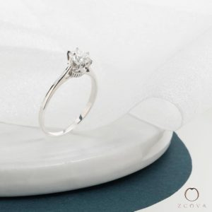 Cathedral Crown Solitaire Engagement Ring