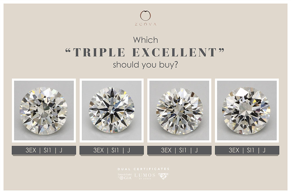Which Triple Excellent should you buy